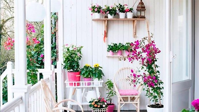 Los beneficios de tener plantas en casa