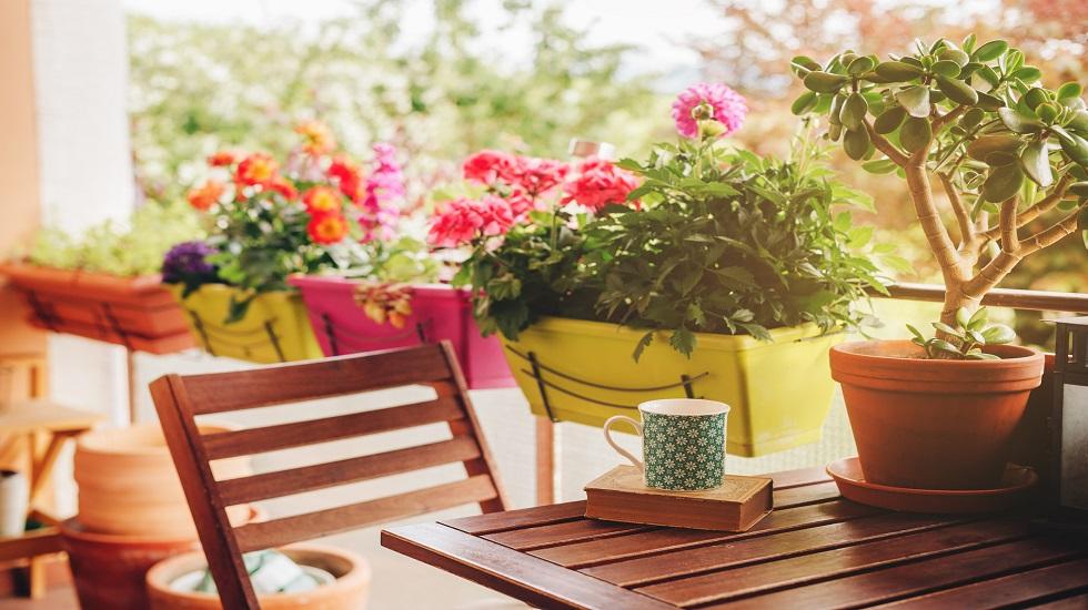 Madera y plantas en balcones pequenos