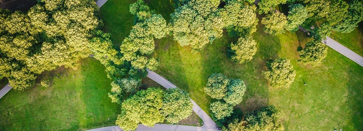 Construcción en zonas verdes: todo lo que debes saber