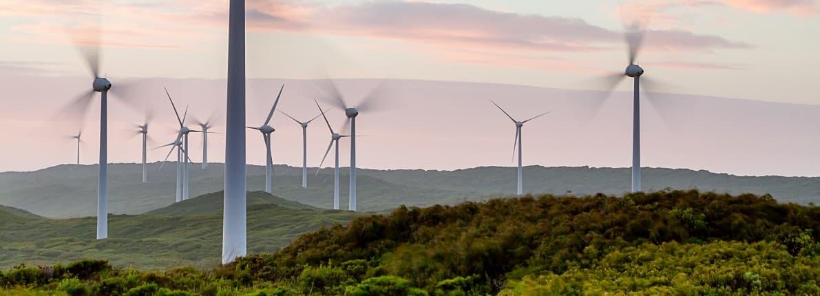 Energías renovables: la mejor alternativa para  ahorrar en la factura de la luz
